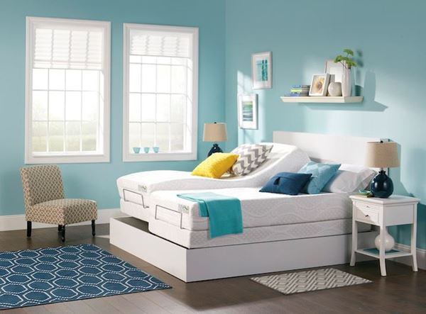 Picture for category Adjustable Beds