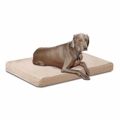 Picture of Health Care Memory Foam Pet Bed Suede