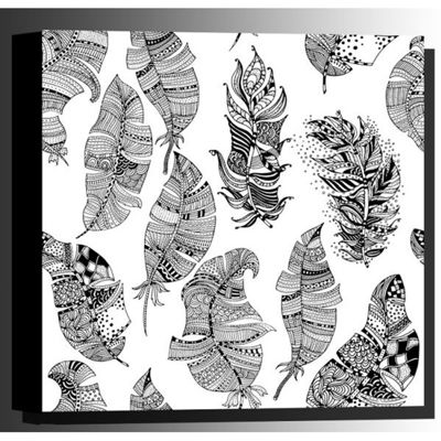 Picture of Color Your Own Canvas-Feathers 16x16 *D