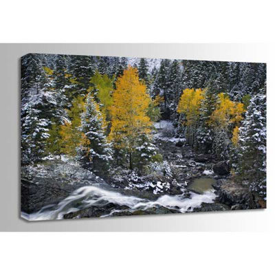 Picture of Autumn Waterfall 48x32 *D