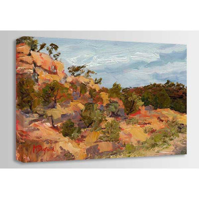 Picture of Arroyo 36x24 In Store *D
