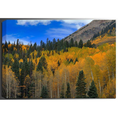 Picture of Autumn Dream 24x36 *D