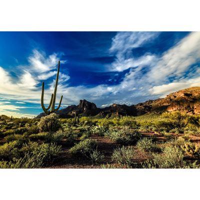 Peralta Canyon 32x48
