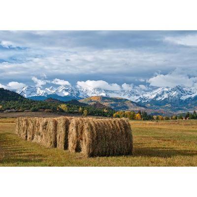 Colorado Hay Bales 36x24