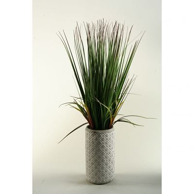 Picture of Onion Grass In Tall Natural Ceramic Vase
