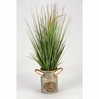Picture of Onion Grass In Metal Can