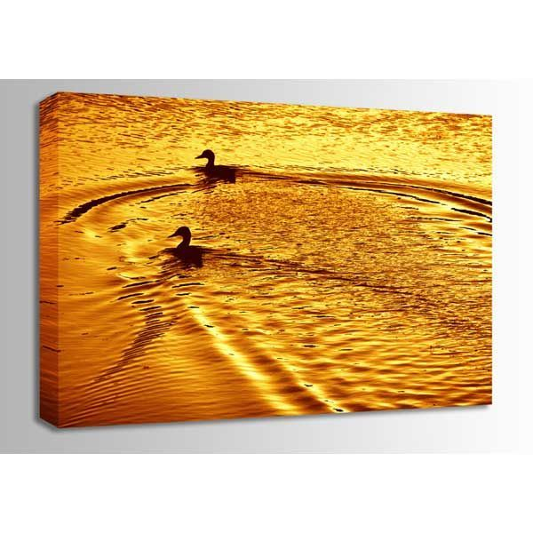 Picture of Ducks At Sunset 24x16 *D