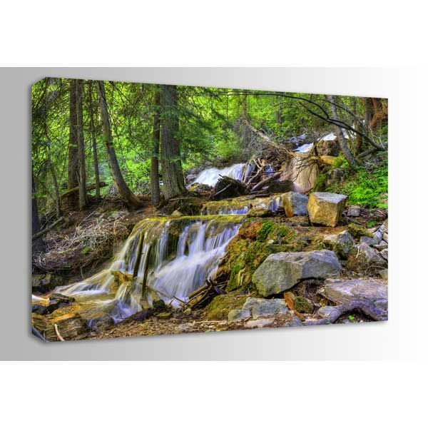 Picture of Dead Horse Canyon Stream 48x32 *D
