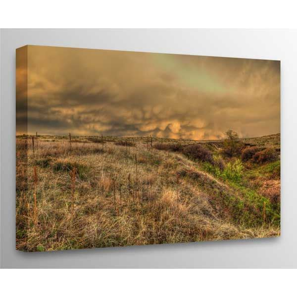 Picture of Spring Storm 36x24 *D