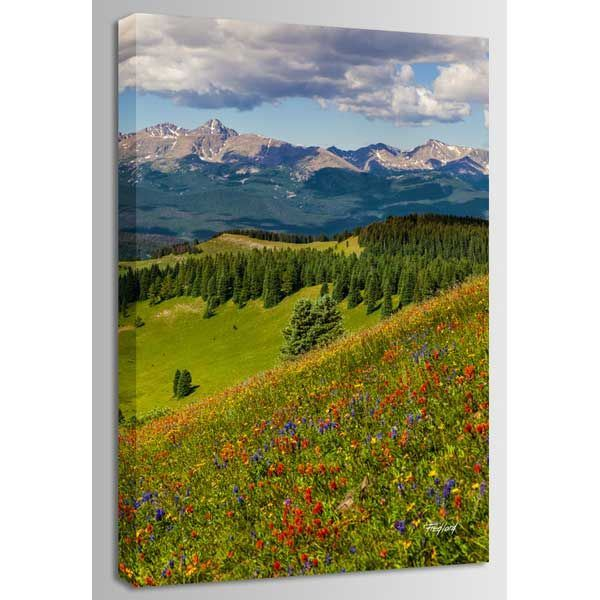 Picture of Shrine Pass Holy Cross 24x36 *D