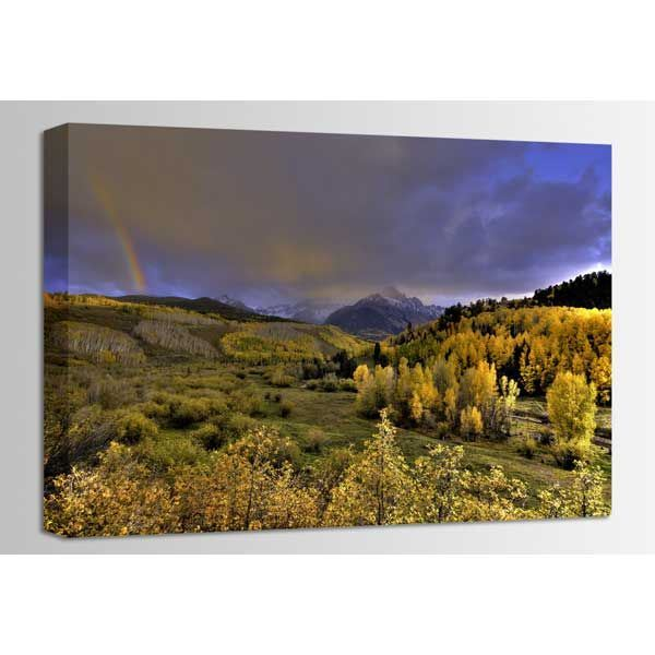 Picture of Real Gold of Colorado 36x24 *D