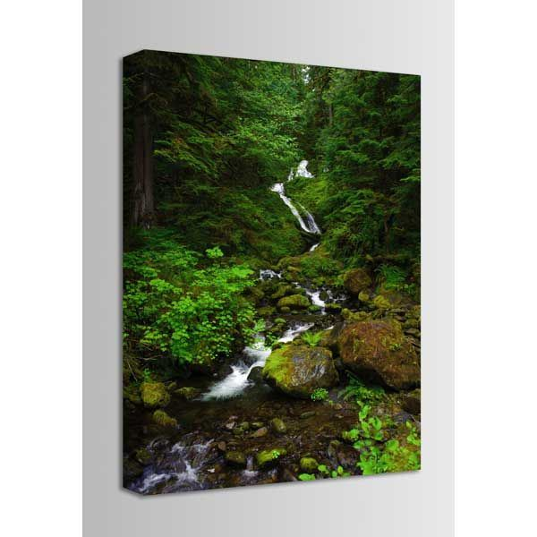 Picture of Spring Runoff at Quinault River 24x36 *D