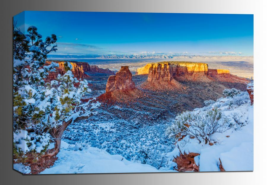 Picture of Winter Trails 24x36 *D