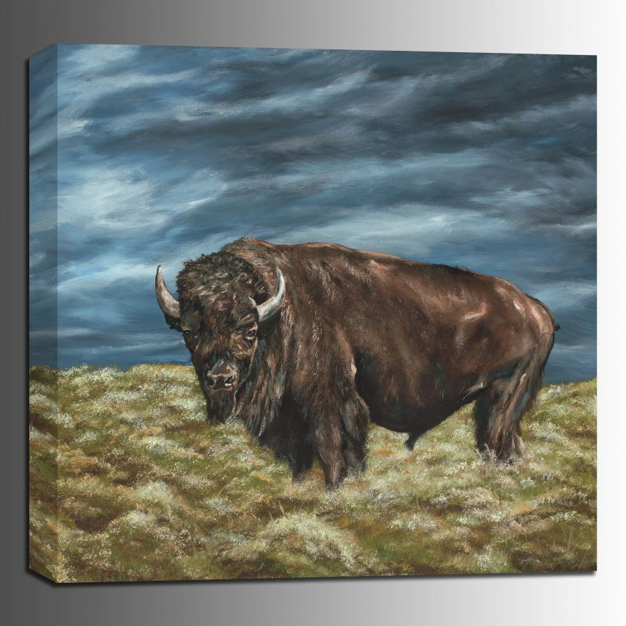 Picture of Lone Buffalo 36x36 *D