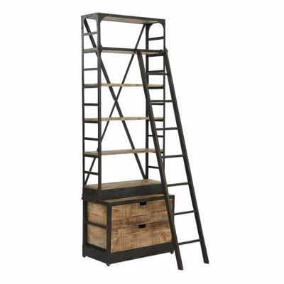 Picture of Vintage Industrial Ladder Library