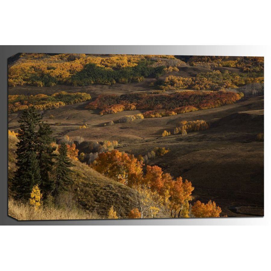 Picture of Crested Butte Autumn 24x36 *D