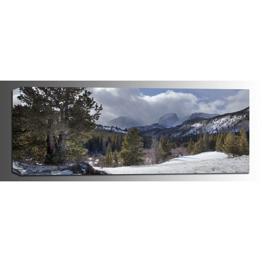 Picture of Late Winter Panorama 12x36 *D