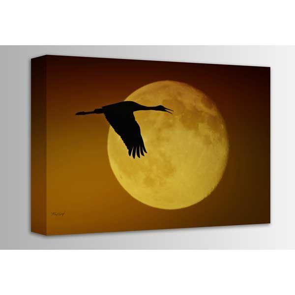 Picture of Sandhill Crane Against the Moon 36x24 *D