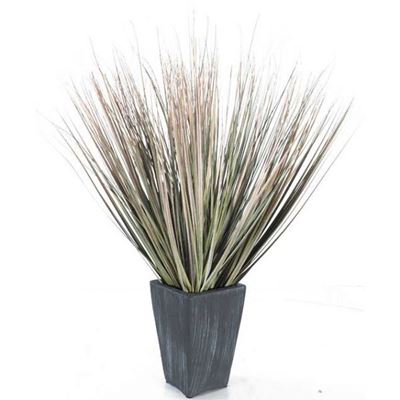Picture of 28in Fall Onion Grass