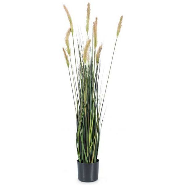 Picture of 4' Foxtail Mix Green Grass