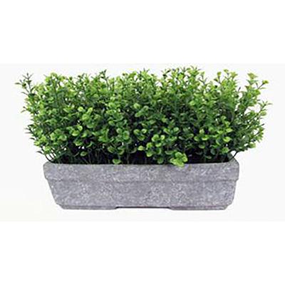 Picture of Artificial Grass Terracota Pot