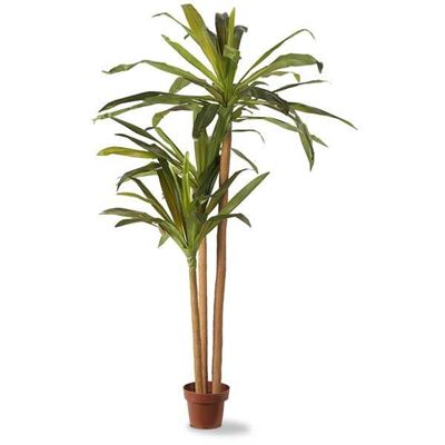 Picture of Faux Palm Tree