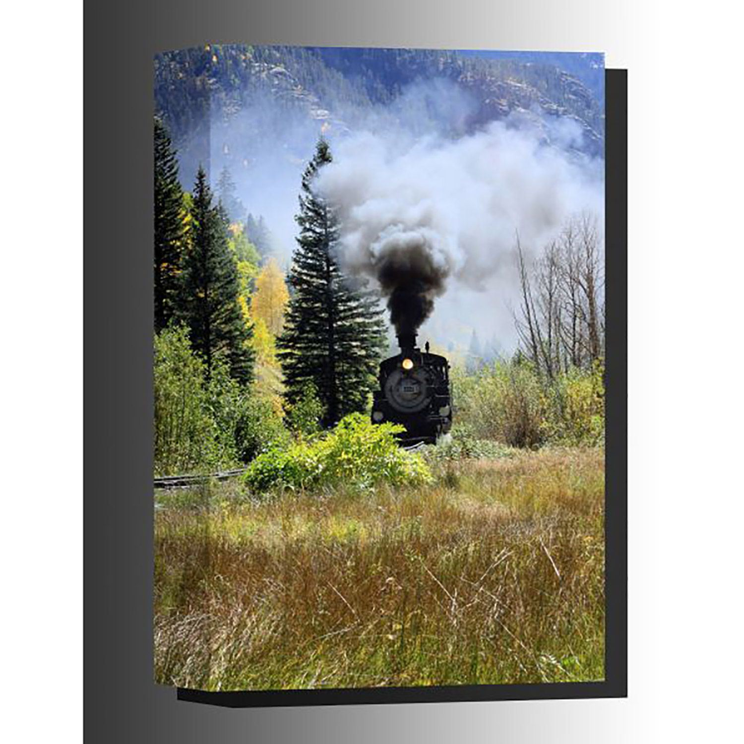 Picture of North to Silverton 36x24 *D