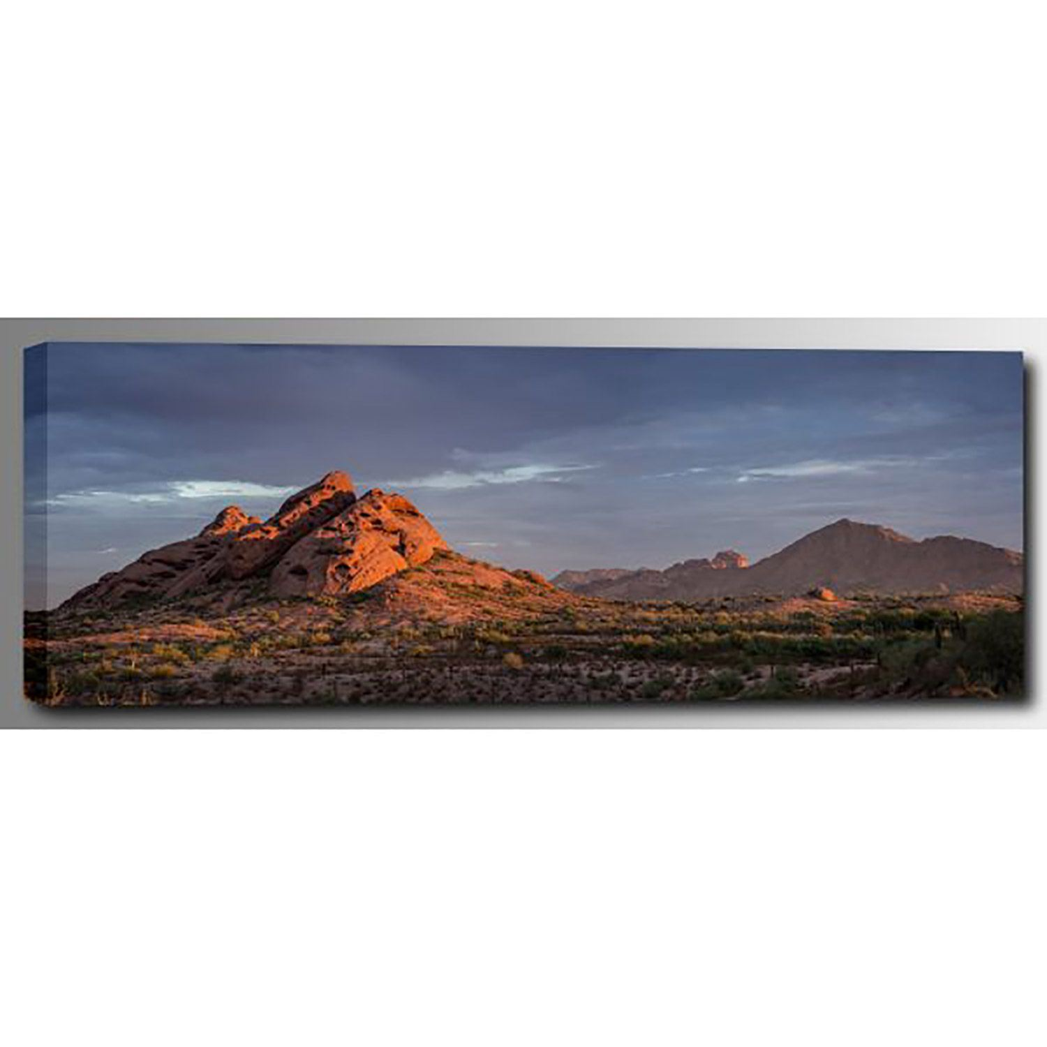 Picture of Papago Morning Light 60x20 *D