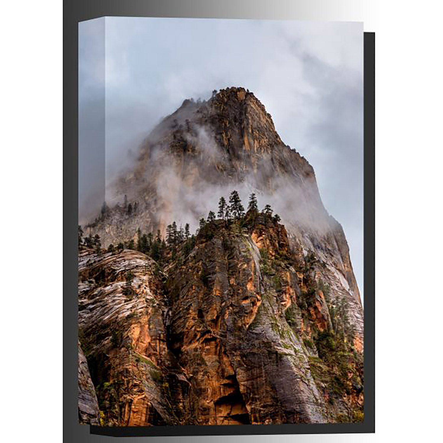 Picture of Zion Mountain 36x24 *D