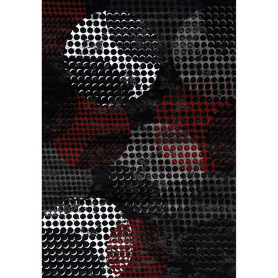 Picture of Digital Spheres Black Grey Red 5x8  Rug