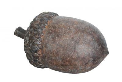 Picture of Acorn Decor Rust
