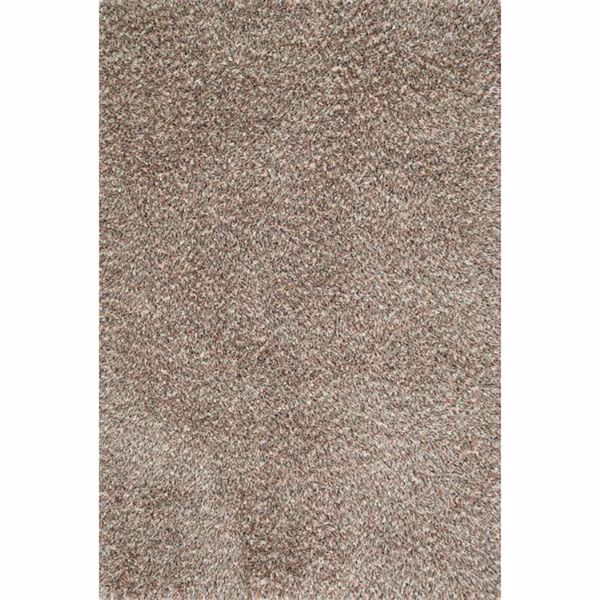 Picture of Cassidy Brown Multi Shag 5'x7'
