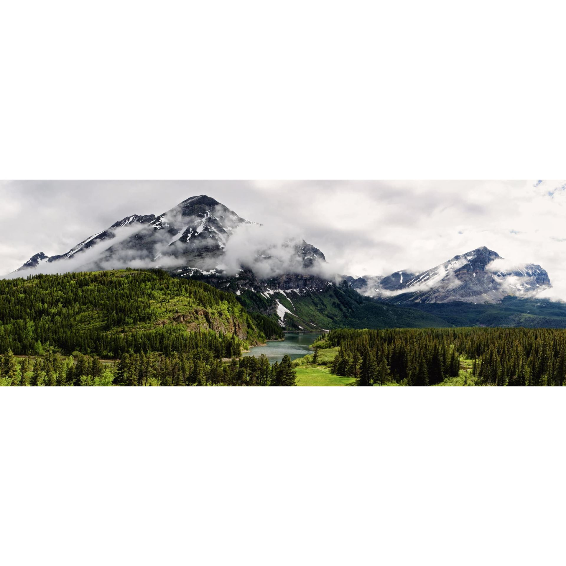 Picture of Montana Rain 20x60 *D
