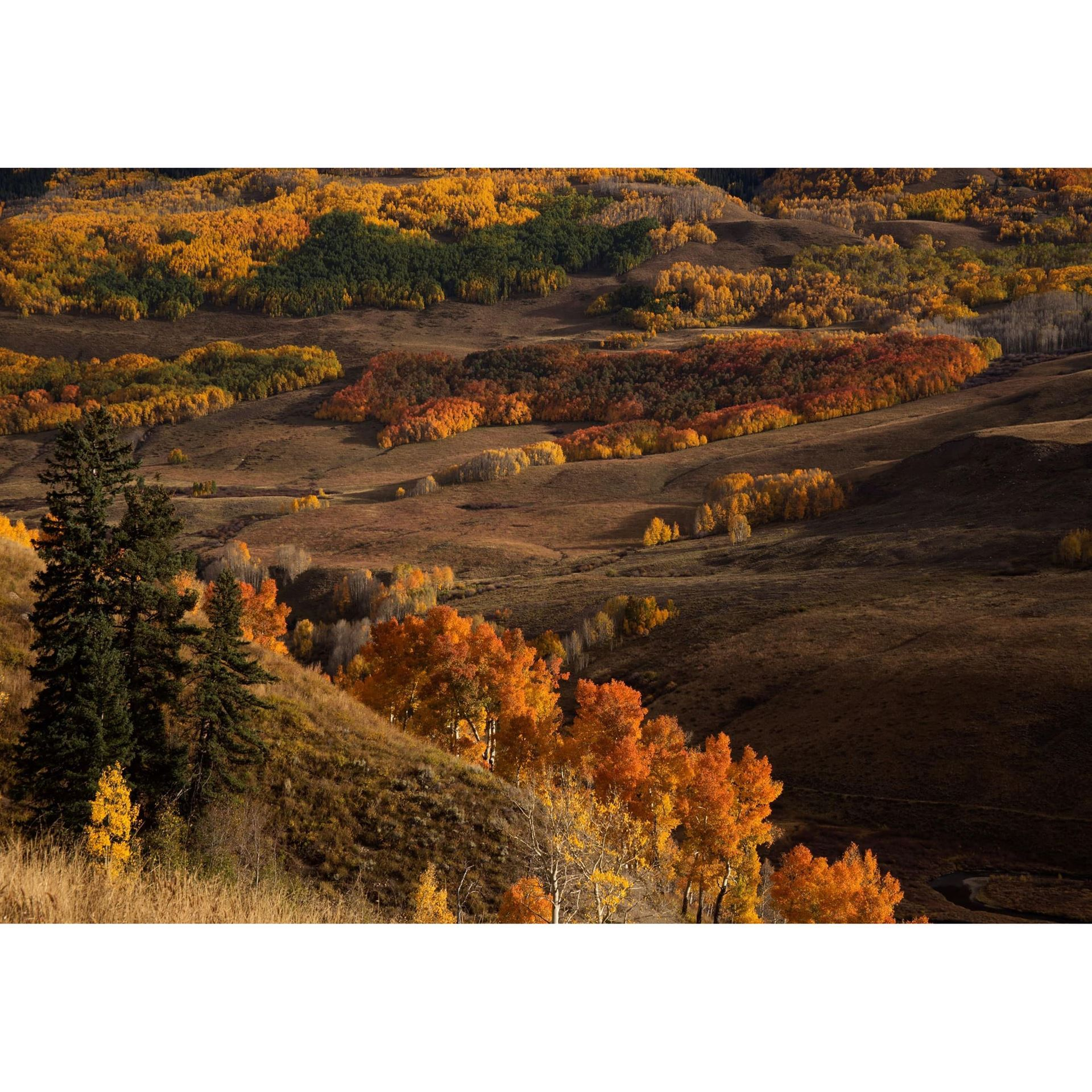 Crested Butte Autumn 24x36