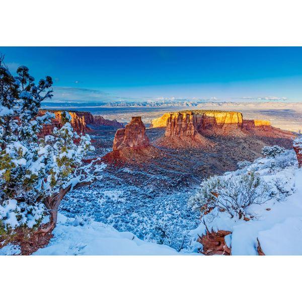 Winter Trails 24x36