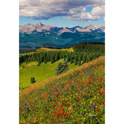 Shrine Pass Holy Cross 24x36