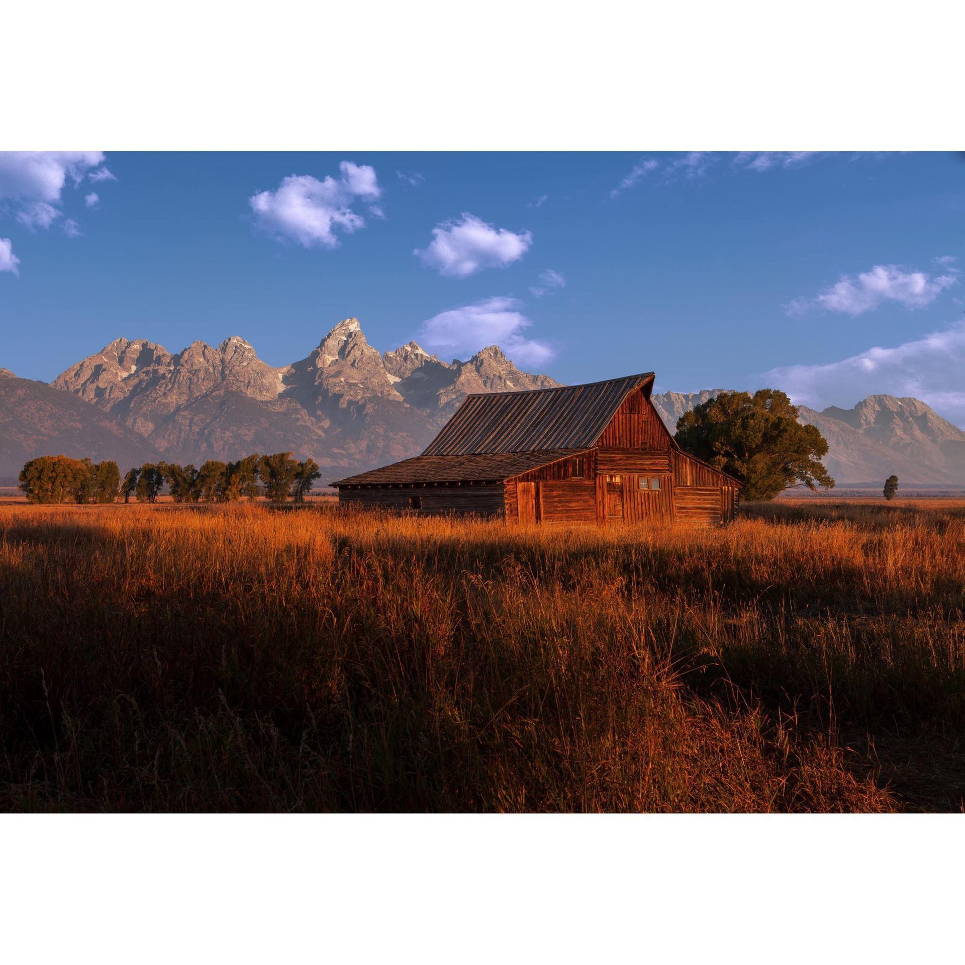 Fall at the Barn 48X32