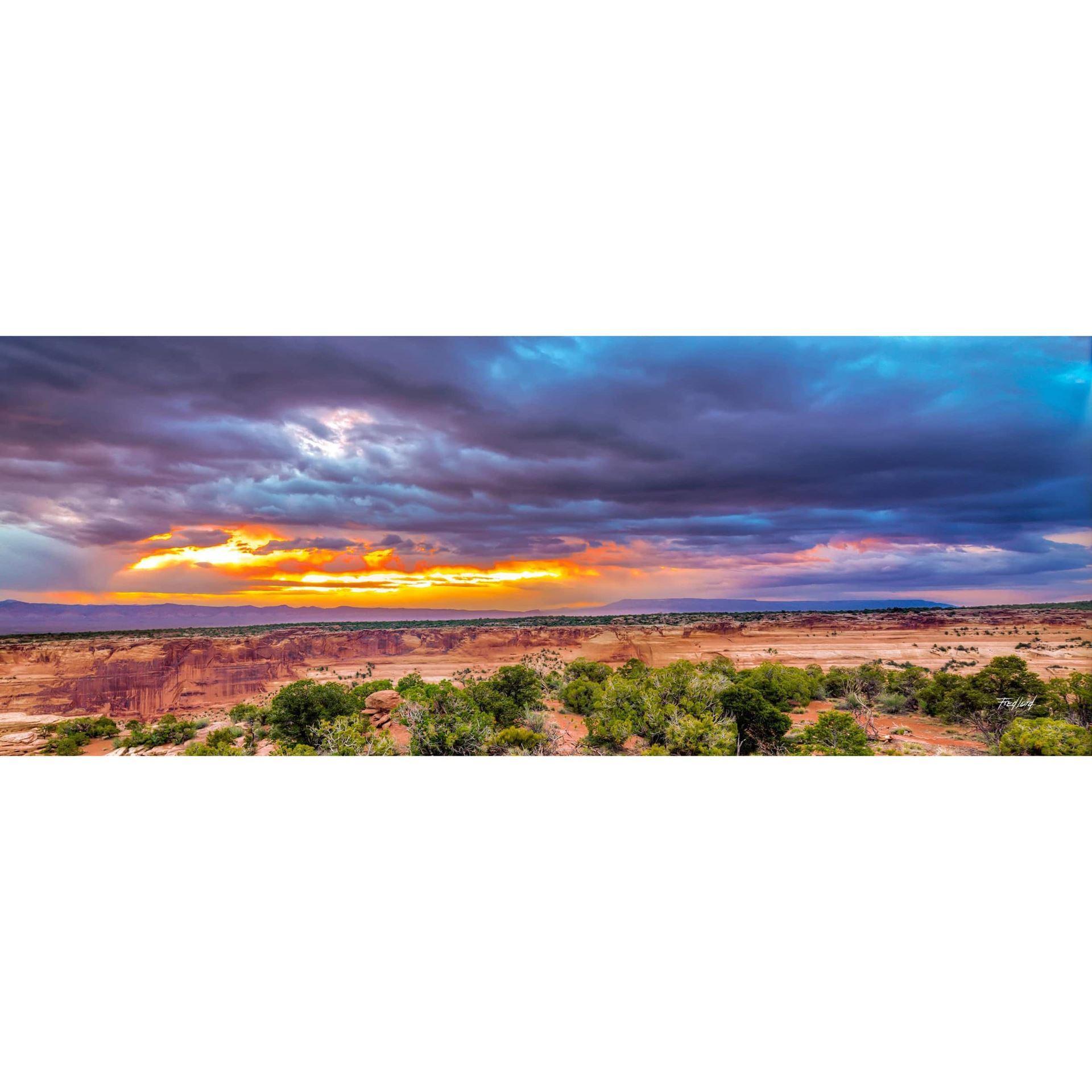 Storm Over The Desert 36x12