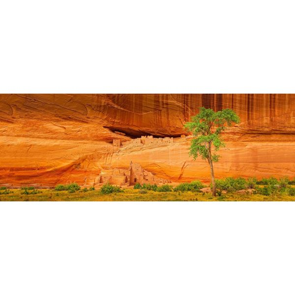 Canyon de Chelly Whitehouse Ruins 60x20