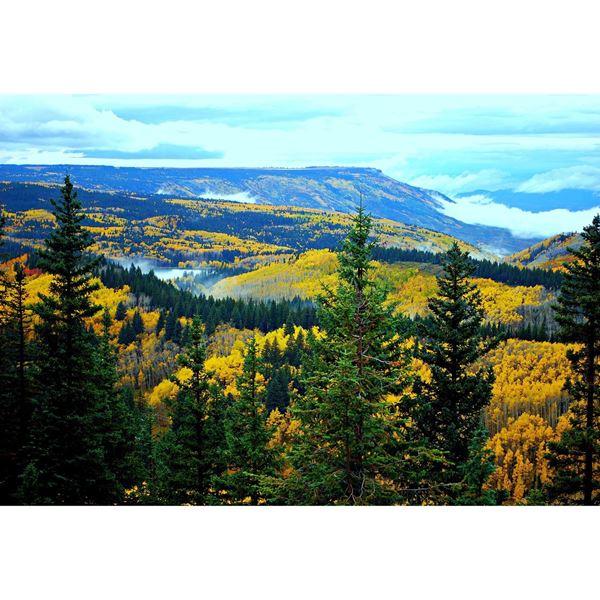 Ashley Furniture Grand Junction: Mystical Grand Mesa 48x32 125-3010412