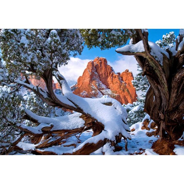 Snow Framed Garden 48x32