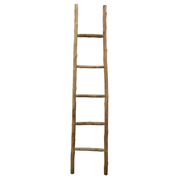 Picture of Wood Ladder Natural