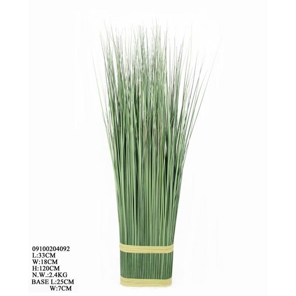 Picture of Green Onion Grass Table Bush