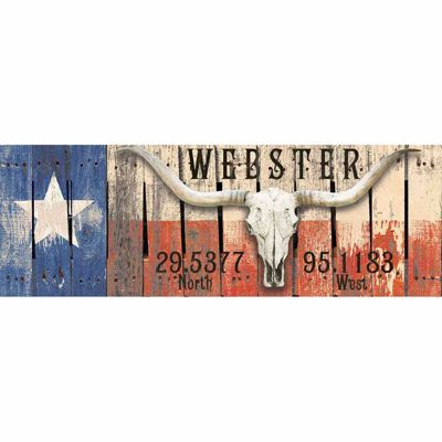 Picture of Texas Longhorn Webster Sign