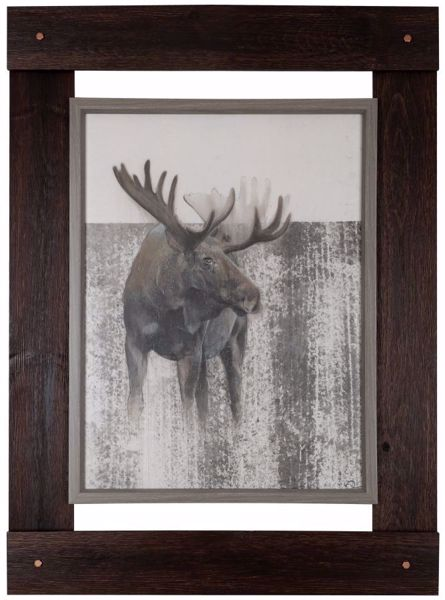 Picture of Framed Moose 33x46