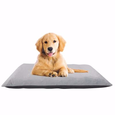 Pet Beds for Your Furry Friends | AFW com