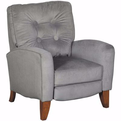 Picture of Fritz Gray Push Back Recliner