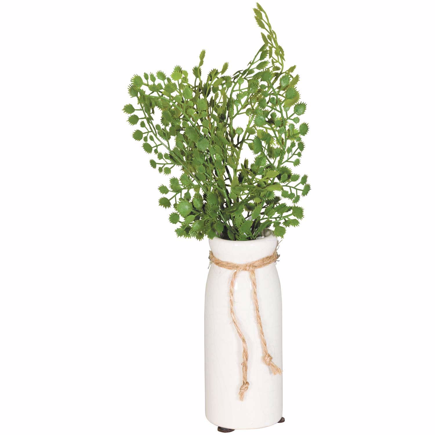 Picture of Ferns In Vase With Tie
