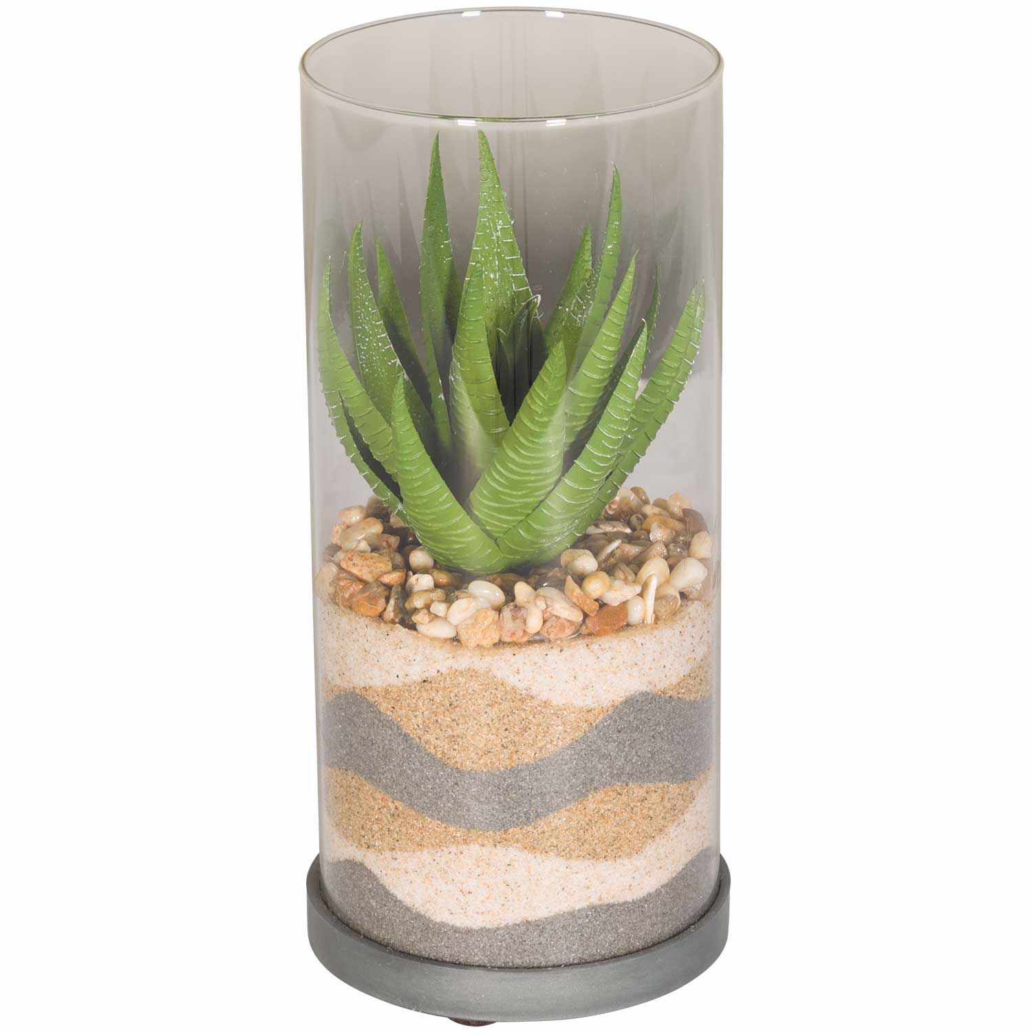 Picture of Layered Sand Succulent