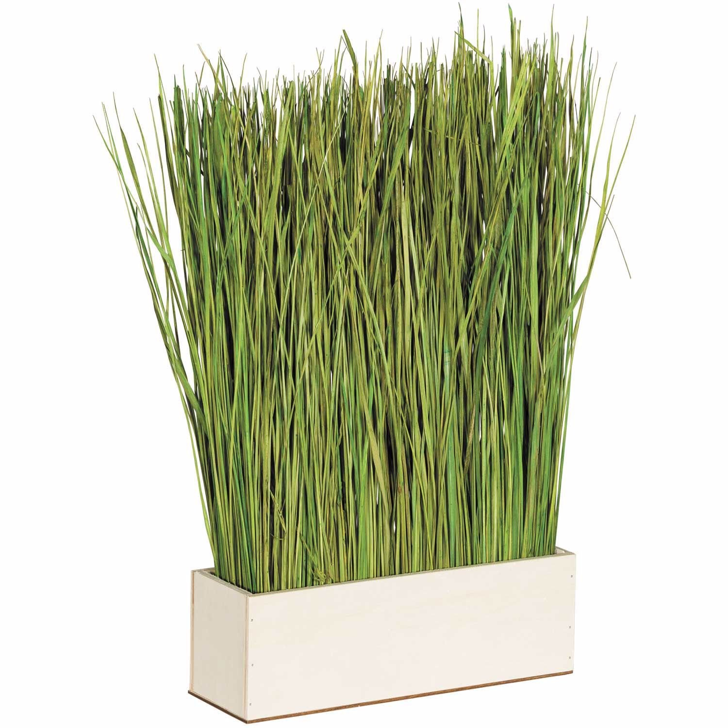 Picture of Grass with Wood Base